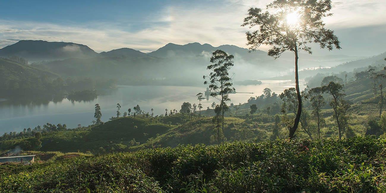 En rundresa Sri Lanka innefattar magiska vyer och magiska landskap