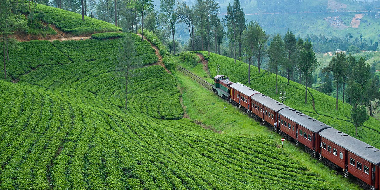 Rundresa på Sri Lanka med gröna slätter och häftiga gamla tåg