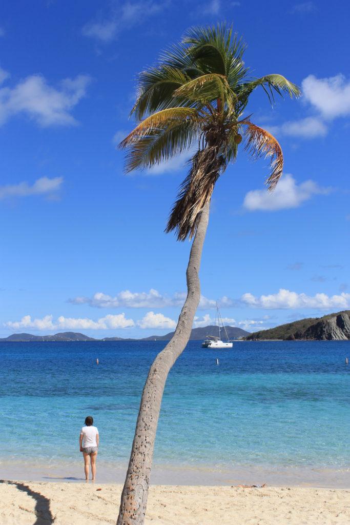 Segling i Karibien Bild 16