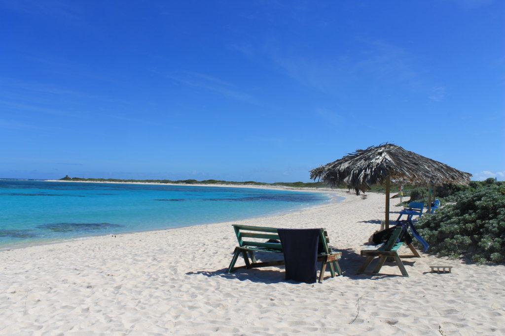 Segling i Karibien Bild 5