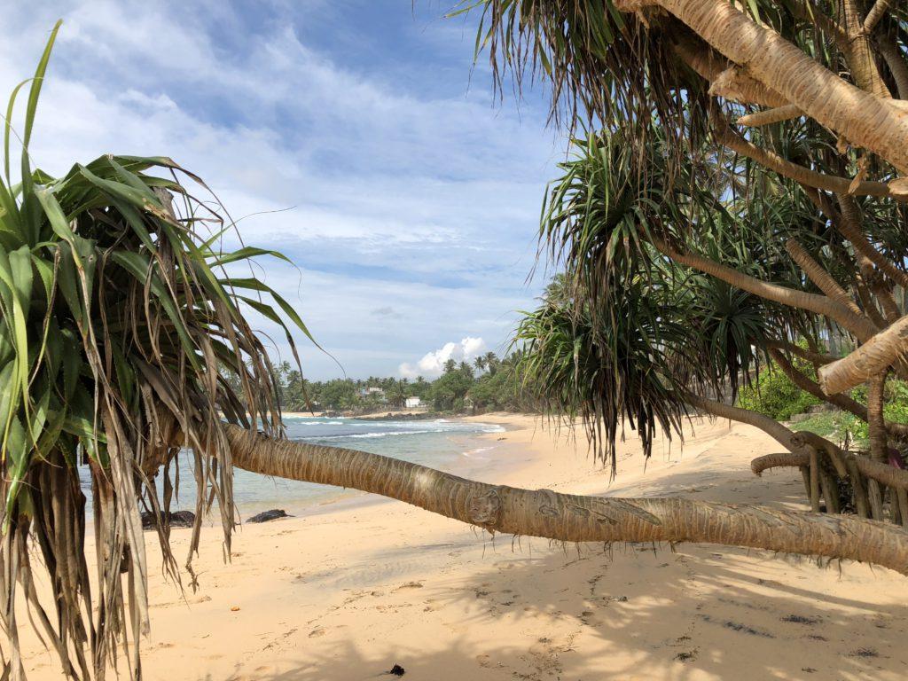 En ö som liknar Robinson