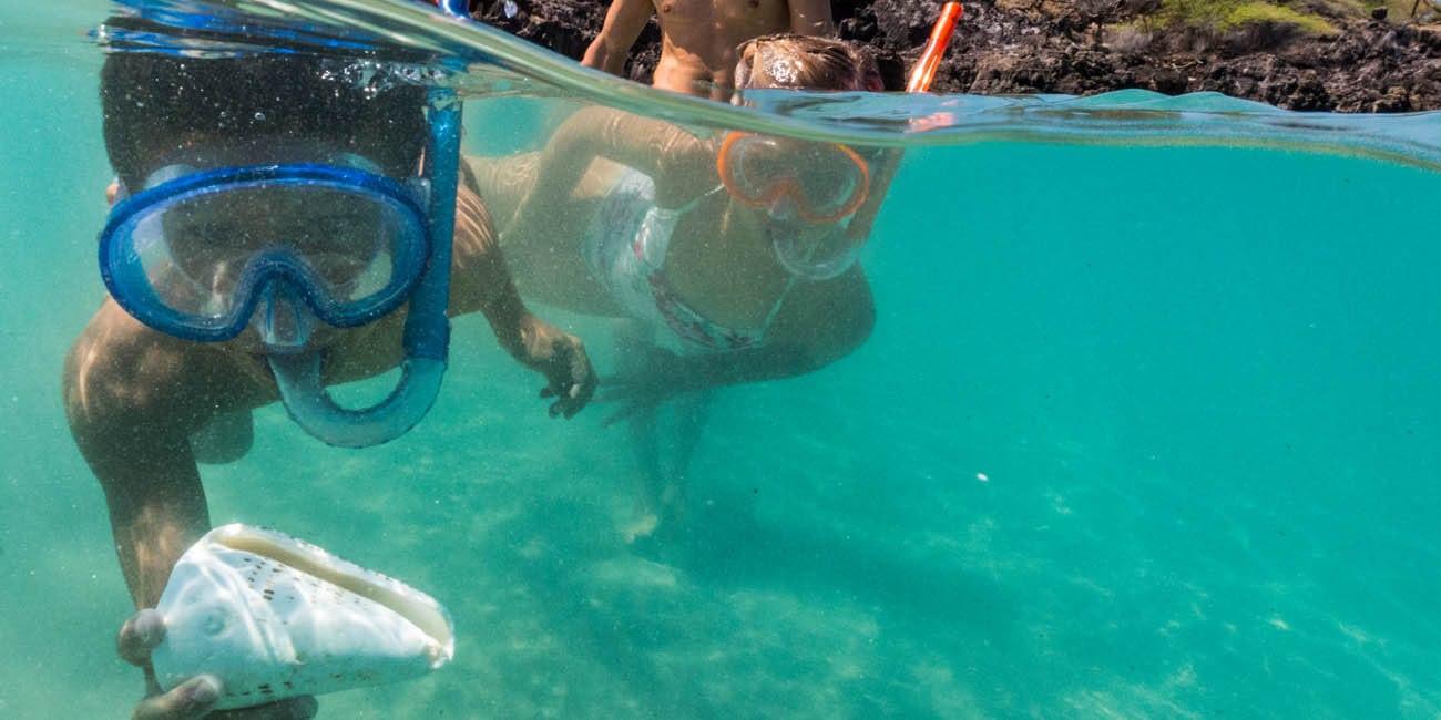 Dyk med hos på Hawaii