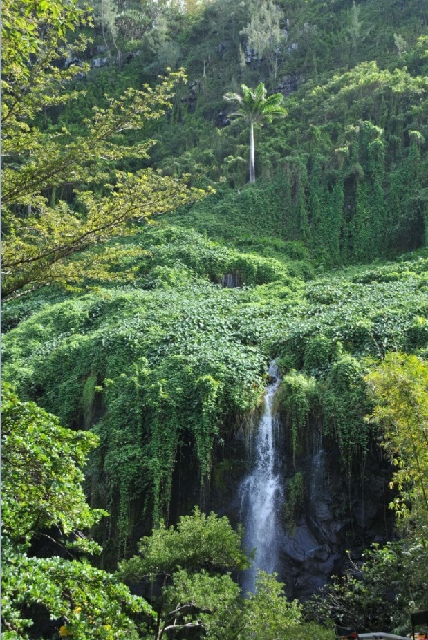 Detta vattenfall är troligtvis helt naturligt