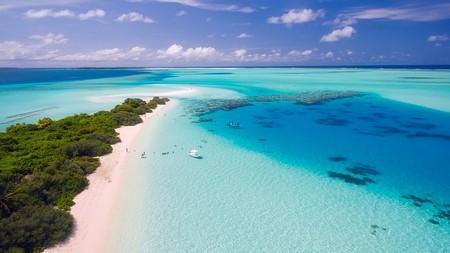 Paradisstrand med azurblått vatten på Maldiverna