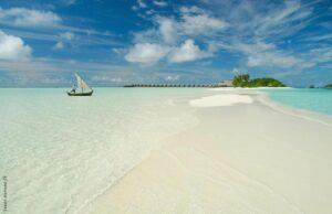 Vilket paradis!